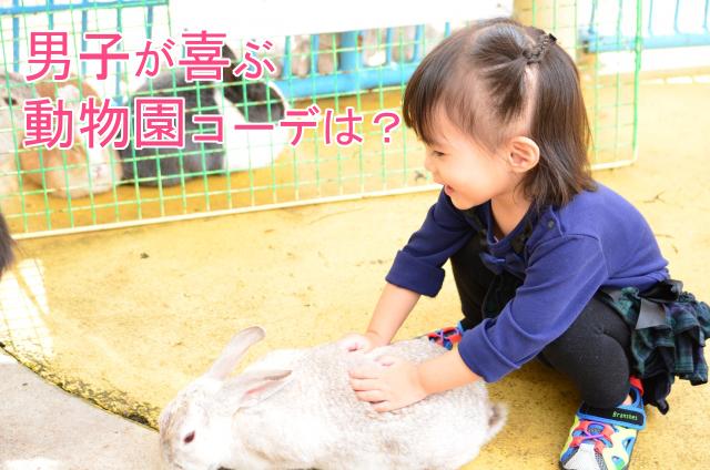 動物園で遊ぶ女の子